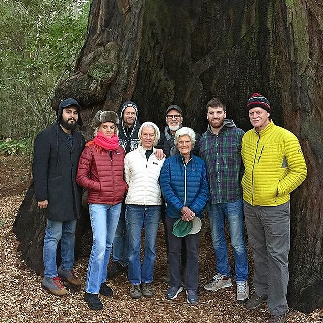 Christmas Day, hiking through the Redwood forest outside of Occidental